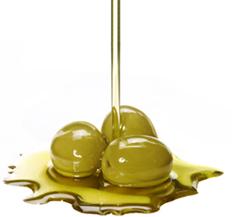 radiomegaro mesologgi olives